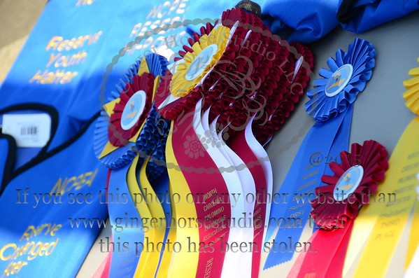 Piedmont Pot O Gold Classic Horse Show June 6, 2015