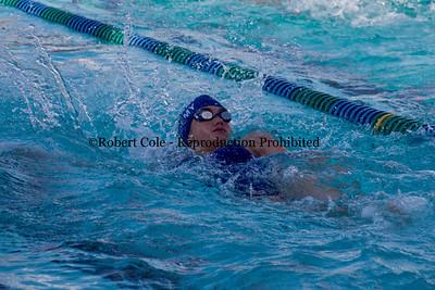 2016-17 Newberry Academy Swim Team