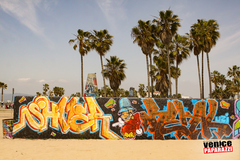 Venice Beach Fun-269.jpg