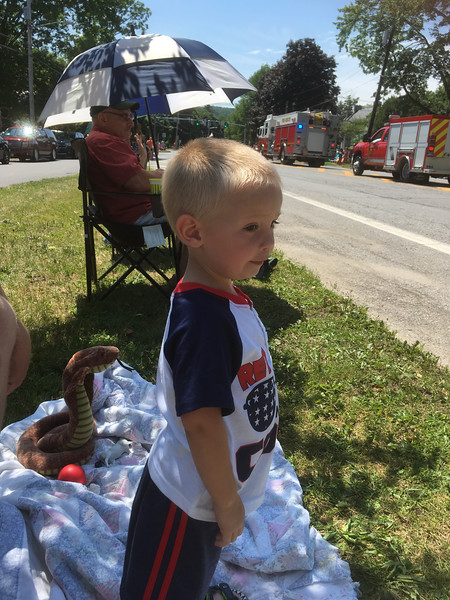 Karen Alvord - Oneida Daily Dispatch The village of Hamilton held its annual Fourth of July parade on Wednesday, July 4, 2018.