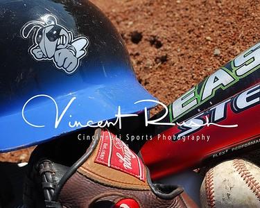 Bee's Baseball 2009