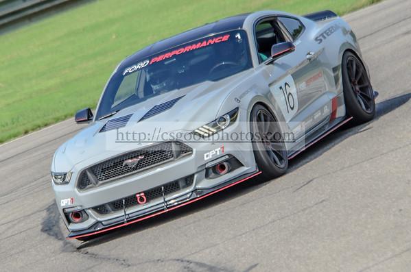 CG 16 Gray Mustang