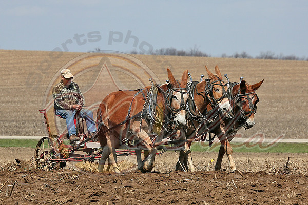 04/27/13 Durrant Plowing Weekend