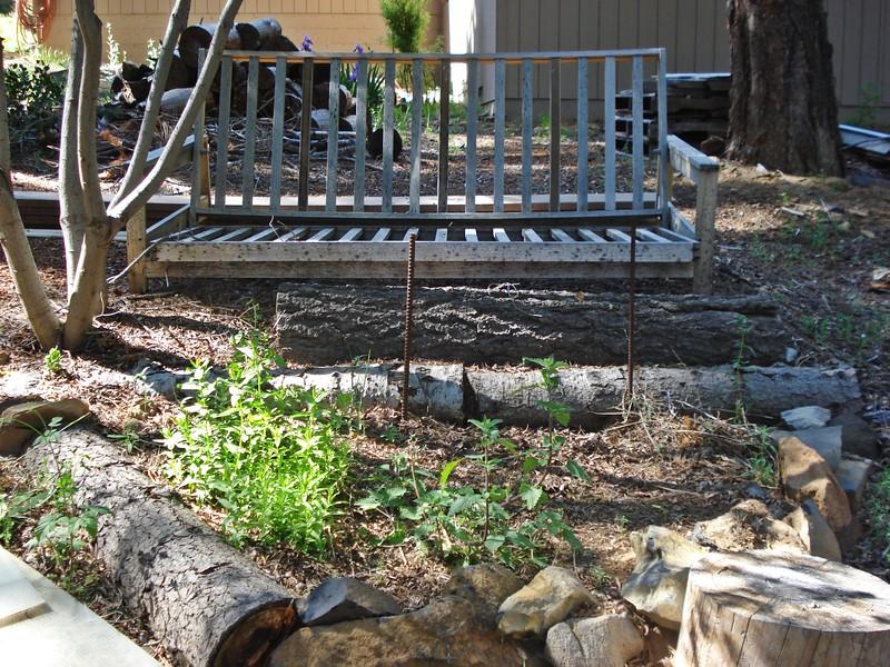 06-06-2015 First Watering Backyard Project (15).JPG