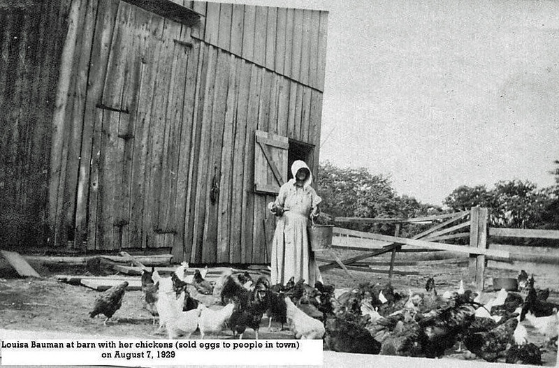 Louisa Bauman feeding chickens 1929.jpg
