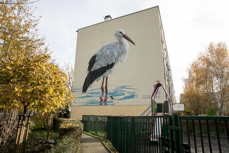 ptasie-murale-autor-wojciech-rokosz_3.jpeg