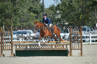 Sunday Hunter Ring: Pony Medal