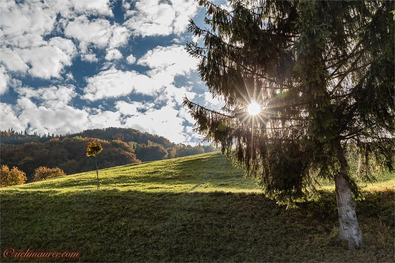 2016-10-22 Herbststimmung Aargau 0U5A1136-Bearbeitet.jpg