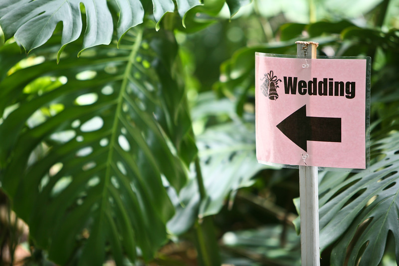 anticipation_wedding