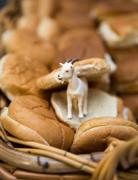 Goat Sandwich.jpg