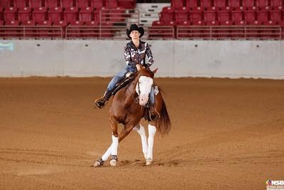 Wednesday Novice Horse Set 11 80-87