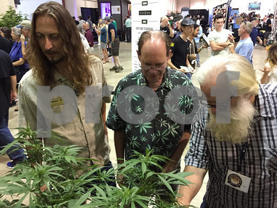 oregon-buzz-pot-plants-at-state-fair-in-a-1st-for-the-us