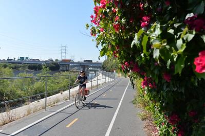 LA River Bike Gap Closure Project