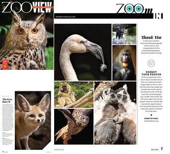 Zoo View - Los Angeles Zoo