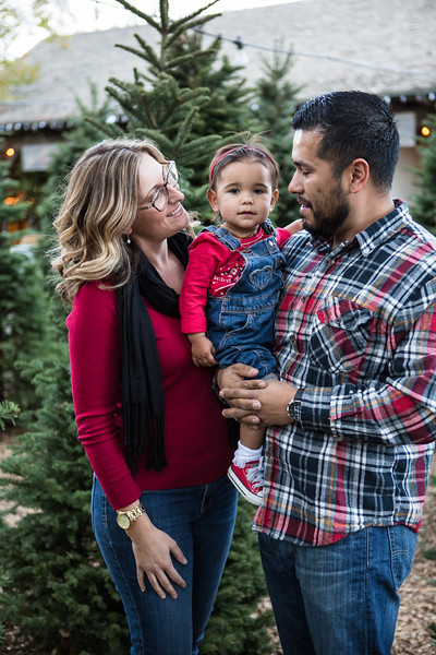 Cardenas Family 2017