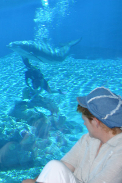 Kathy enjoying the underwater view in the Dolphin Habitat at the Mirage Casino.