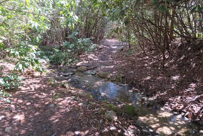 Devils Elbow Trail - 3,600'