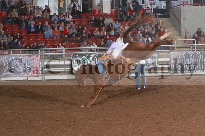 SRA Rodeo Finials  2011