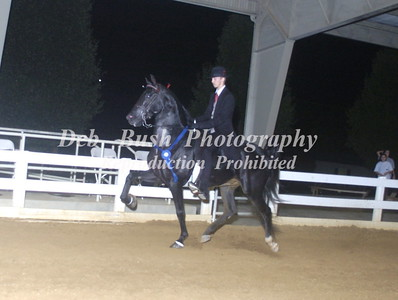 CLASS 24  AMATEUR OWNED & TRAINED OPEN