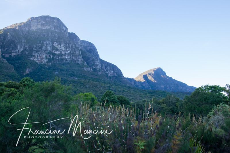 South Africa (926 of 5206).jpg