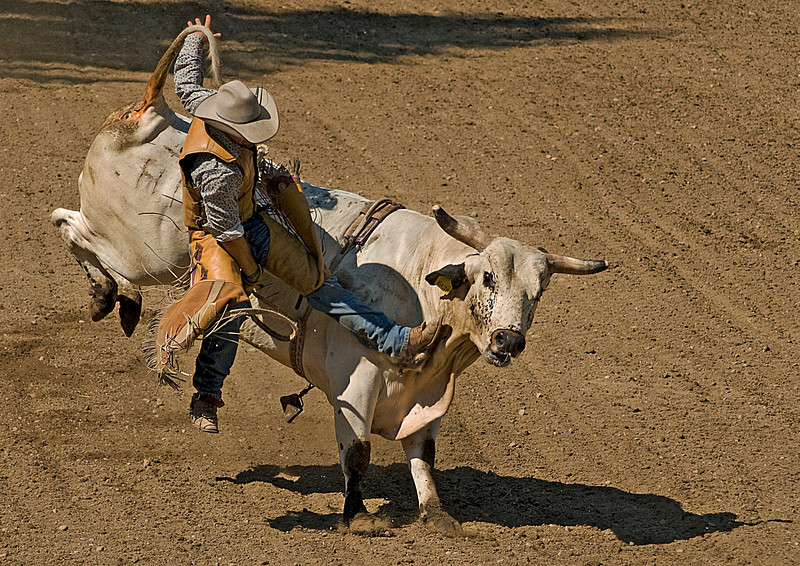 COOMBS RODEO-2009-3719A.jpg
