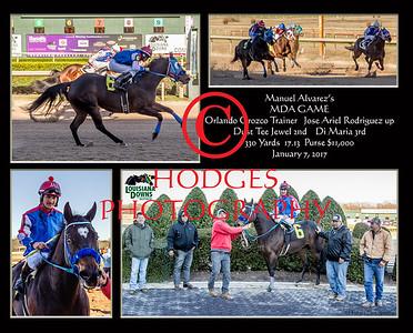 Quarter Horse 2017 Season