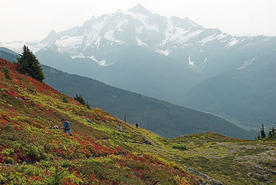 Yellow Aster Butte Hike - Updated 09-08