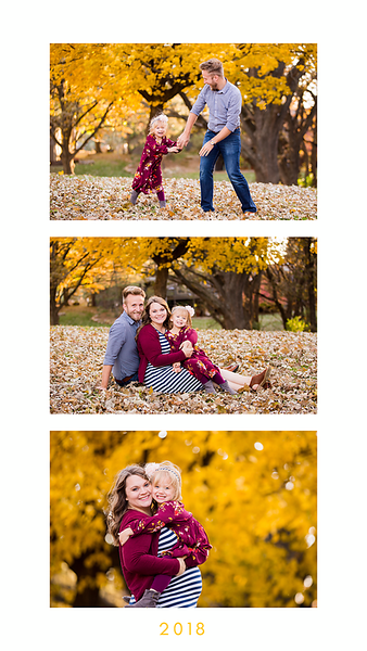 Fall Collages