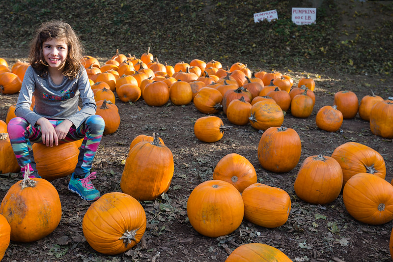 20171022_Apple Picking and other Fun_0136.jpg