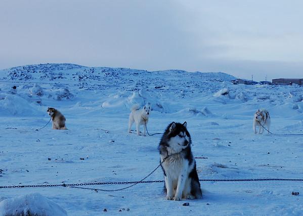 Iqaluit, Nunavut, Canada (02/2010)