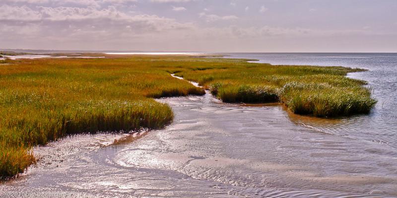 Namskaket Marsh from Rock Harbor_.jpg