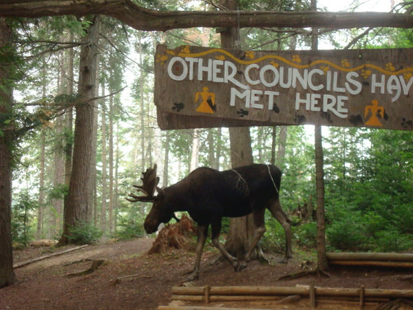 Enter the New Indian Council for Council Fire Meetings and Trip Reports