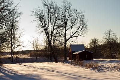 Winter Scenes 2011