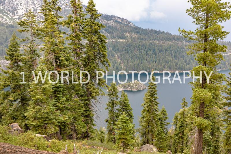 San Fran_Lake Tahoe Trip 2017-162-13.jpg