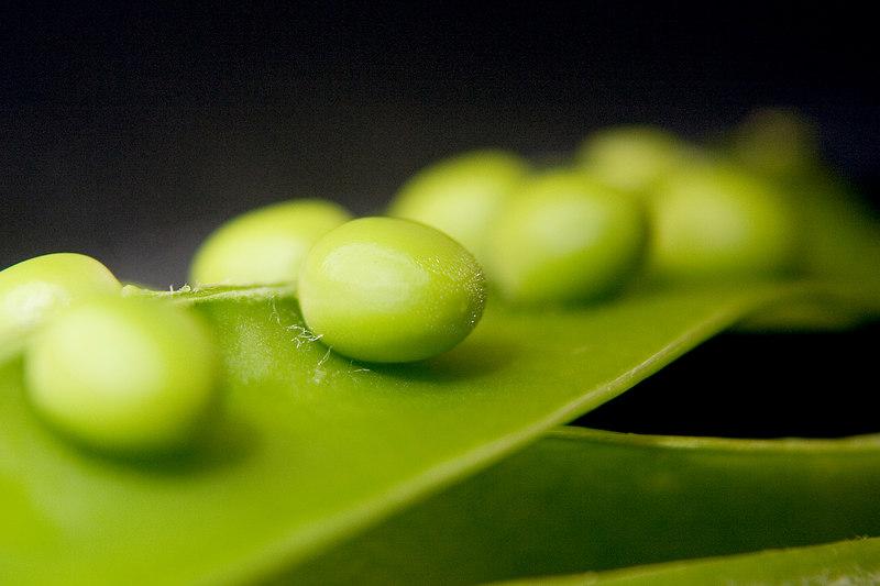 peas2.jpg