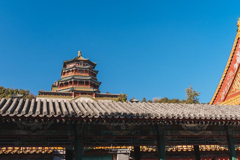 BeijingMarch2019-35.jpg