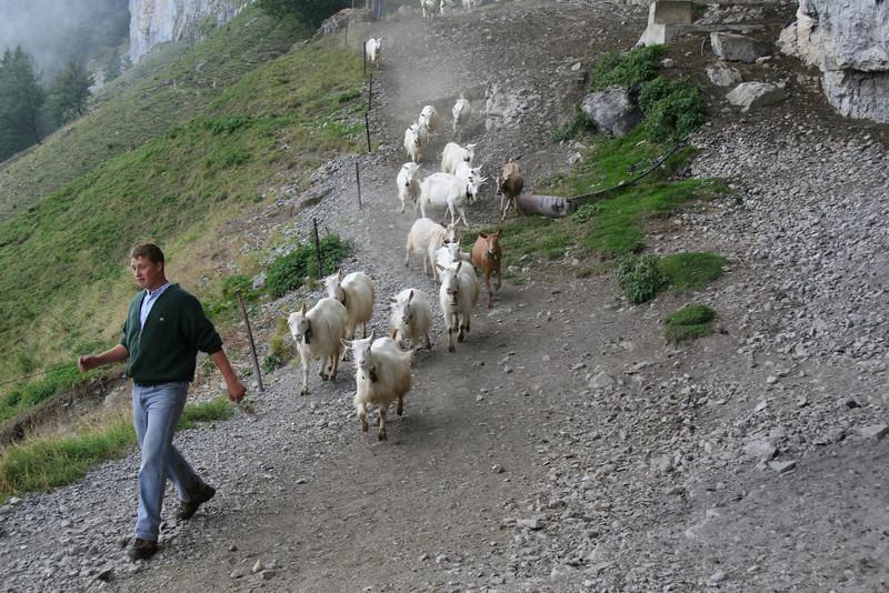 2010-Switzerland-Italy 385.JPG
