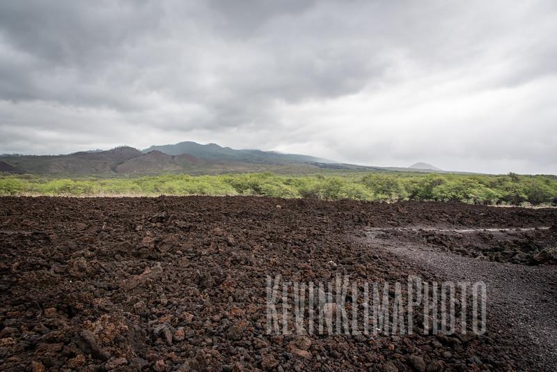 Maui2016-123.jpg
