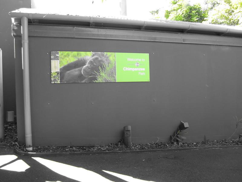 Sydney - Sydeny Zoo-33.JPG