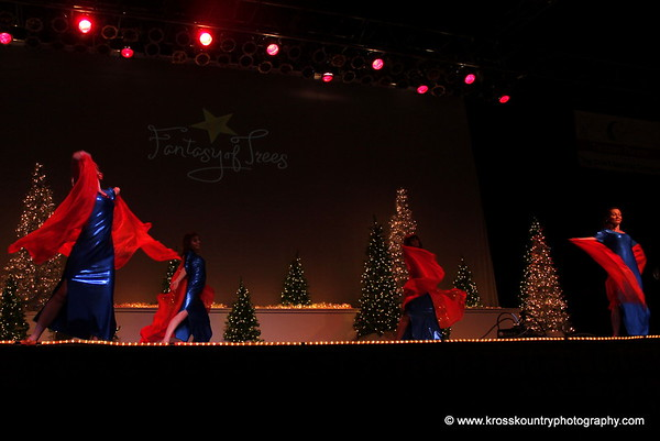 11.29.14: Alexandria Dancers at Fantasy of Trees