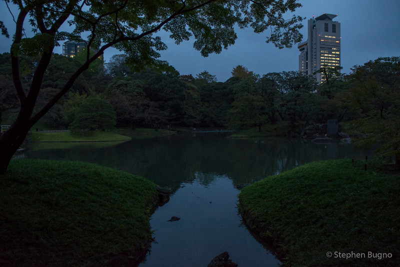 Tokyo One-8440.jpg