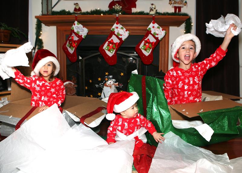christmas2014a.jpg