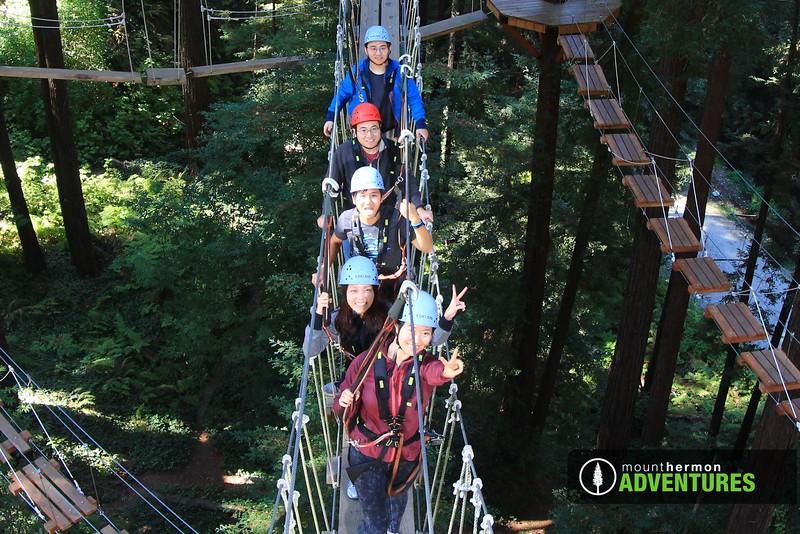 sequoiaportrait_1475701577477.jpg