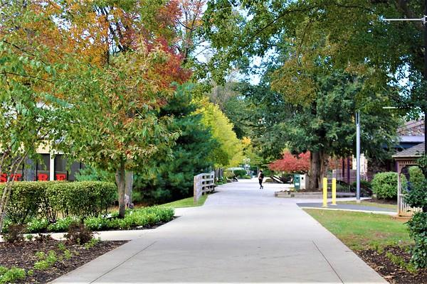 Fall 2019 Campus Pics