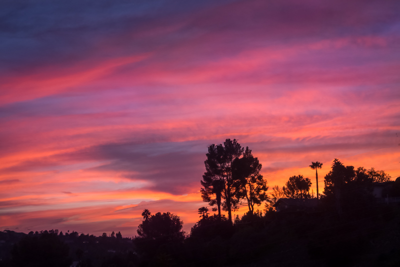 April 1 - Tarzana sunset.jpg