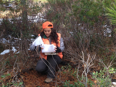 Community Ecology Research Project Field Work 2012