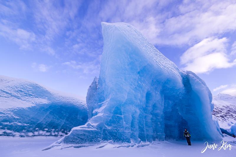 2020-01-17_Alaska Wild Guides-6102583-Juno Kim.jpg