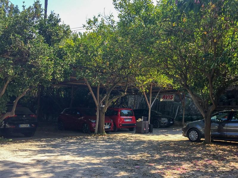 Pretty rental car yard