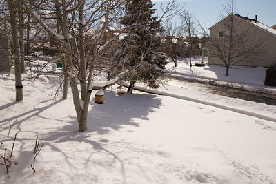 2012-2-4 Big Snow