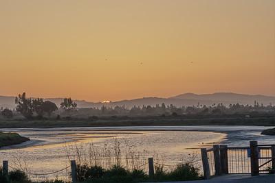 Palo Alto Baylands 20180408